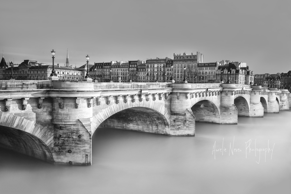 Pont Neuf, Paris, France  (AUN2014W11273FR)