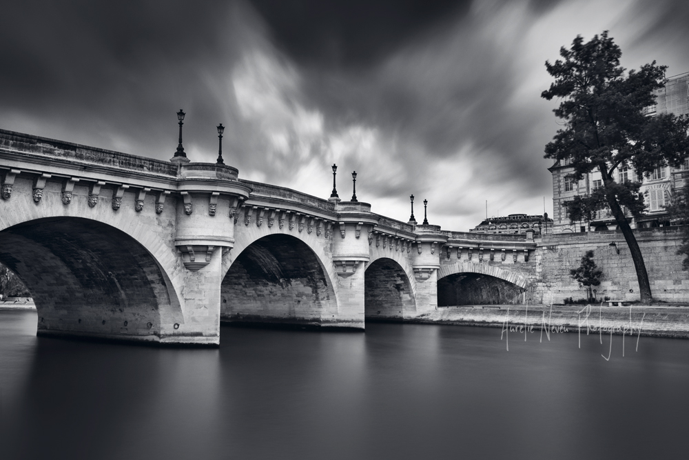 Pont Neuf, Paris, France  (AUN2014WK12135FR)